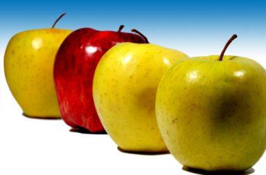 maçãs, Jan13